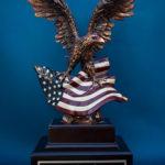 Award 40 150x150